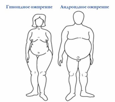 Фенотипические разновидности ожирения