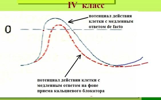 Схема действия антиаритмиков класса IV
