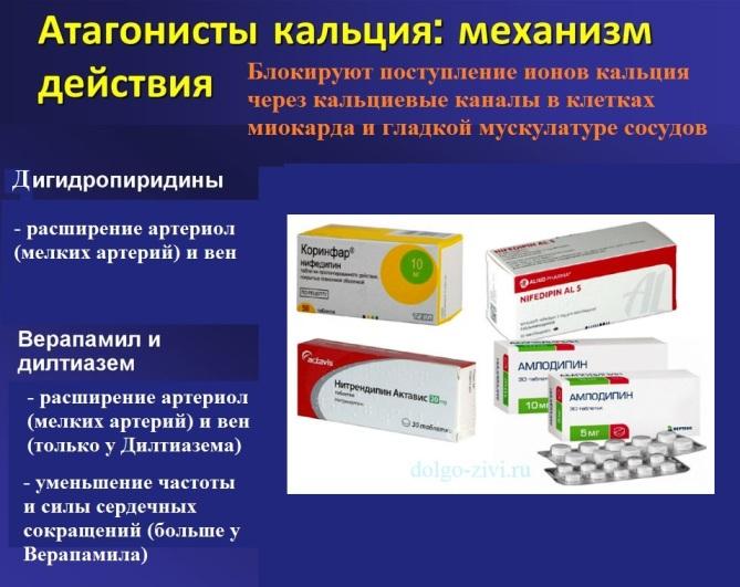 Фармакодинамические эффекты действия антагонистов кальция