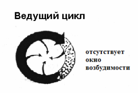 Re-entry ведущего цикла