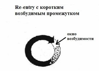Microre-entry