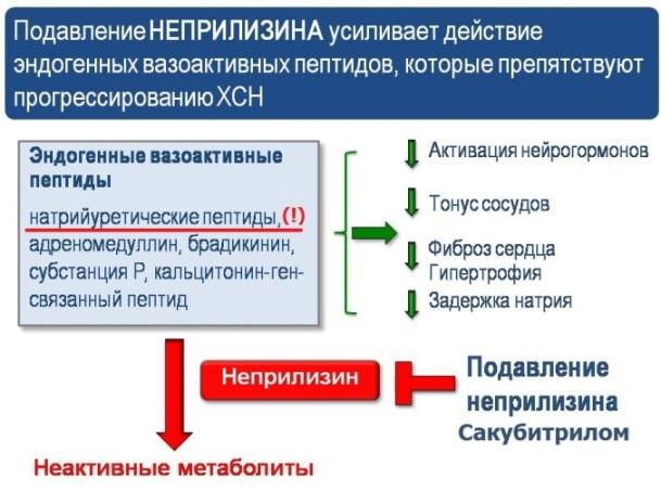 Схема действия Сакубитрила